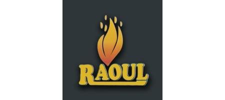 Raoul bvba